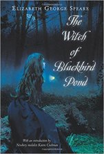 The witch of blackbiard pond