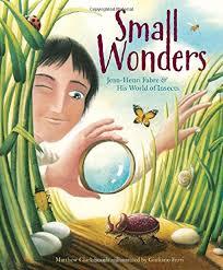 Small Wonders: Jean-Henri Fabre and His World of Insects: Clark Smith,  Matthew, Ferri, Giuliano: 9781477826324: Amazon.com: Books